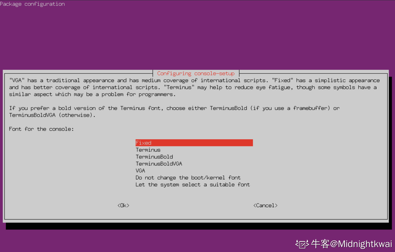 在Ubuntu中选择控制台字体
